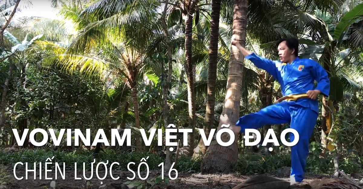 Chiến lược số 16 Vovinam Việt Võ Đạo